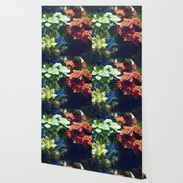 Longwood Gardens Christmas Series 90 Wallpaper