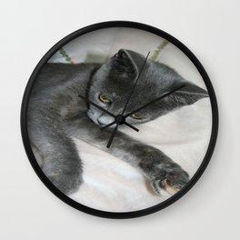 Cute Grey Kitten Relaxing  Wall Clock