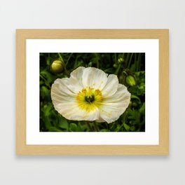 Medium Sized Flower Framed Art Print