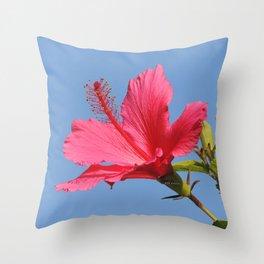 The Neighbor's Pink Hibiscus Throw Pillow