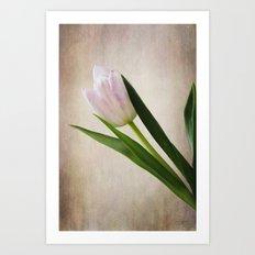Blushed Art Print