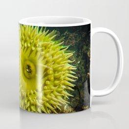 Tide Pools Coffee Mug
