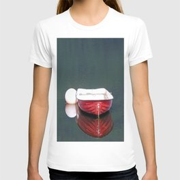 Little Red Boat T-shirt