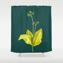 Wild Garlic Plant Botanical Art In Green Shower Curtain