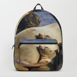 Snuggle Baby Backpack