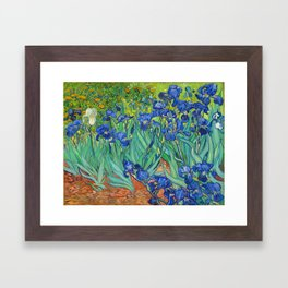 Vincent Van Gogh Irises Painting Framed Art Print