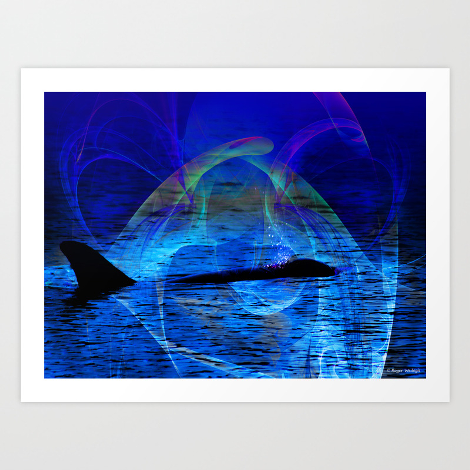 - Dolphin Crossing Art Print By Rogerwedegis Society6