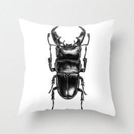 Lucanus Beetle Throw Pillow