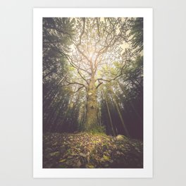 The taller we are Art Print