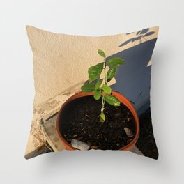 Resilient Throw Pillow