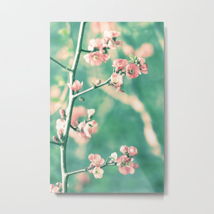 Softly Spring Love Metal Print