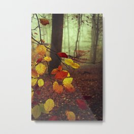 Leaves in Autumn Metal Print