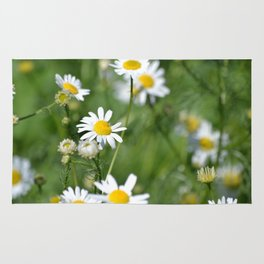 daisies in the breeze Rug