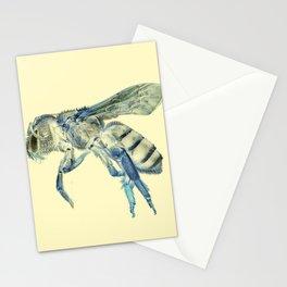 Beeeee Stationery Cards