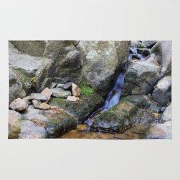 Upper Maxwell Falls in Autumn Rug