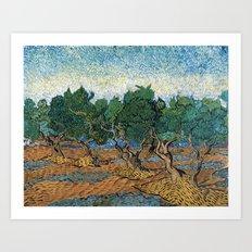 Vincent Van Gogh - Olive Grove Art Print