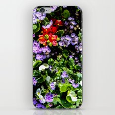 Flower Cluster iPhone & iPod Skin