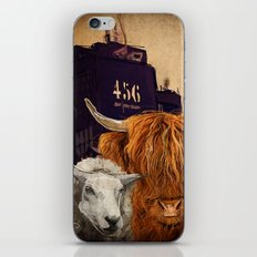 Sheep Cow 123 iPhone & iPod Skin