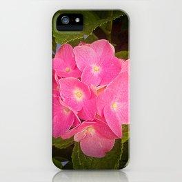 Orquiea iPhone Case