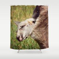 kangaroo Shower Curtains featuring Baby Kangaroo by MehrFarbeimLeben