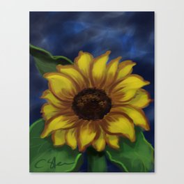 Dramatic Sunflower DP141118a Canvas Print