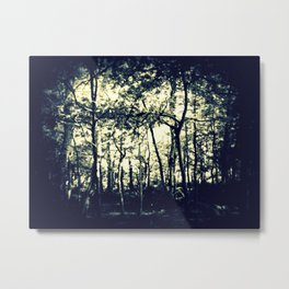 Down to the Woods Metal Print