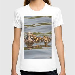 Mallard duck and ducklings T-shirt