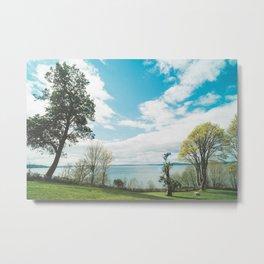 Magnolia Park Metal Print