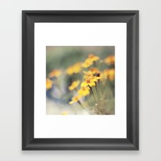 Orange zest Framed Art Print