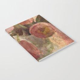 peach tulips Notebook
