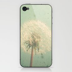 Dandelion Clock iPhone & iPod Skin