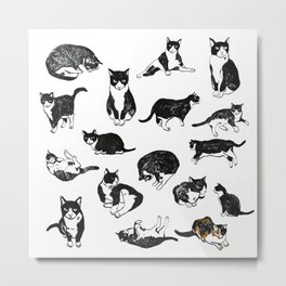 25 Cats Name Norrell and One Pigeon Metal Print