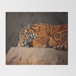 Resting Sumatran Tiger Throw Blanket