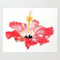 hibiscus Art Prints featuring Hibiscus by Regan's World