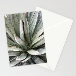 Succulents // Light Green Blue Cactus Plant Leaves Close Up Horizontal Stationery Cards