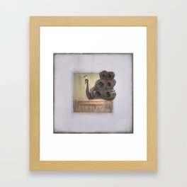Show your Feathers Peacock  Framed Art Print