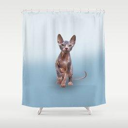 Drawing Sphynx kitten 5 Shower Curtain