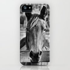 Waiting (Black and White Horse #1)  Slim Case iPhone (5, 5s)