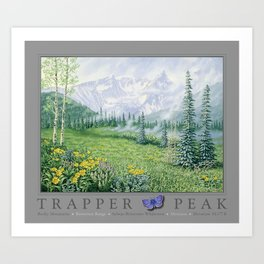 Trapper Peak Art Print
