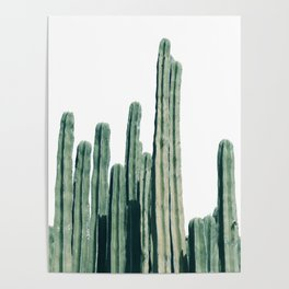 Cactus Line Poster