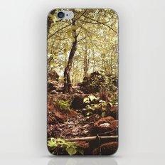 Slope iPhone & iPod Skin