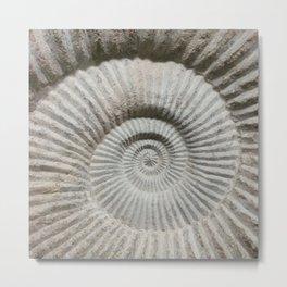 Fractal Fossil Metal Print