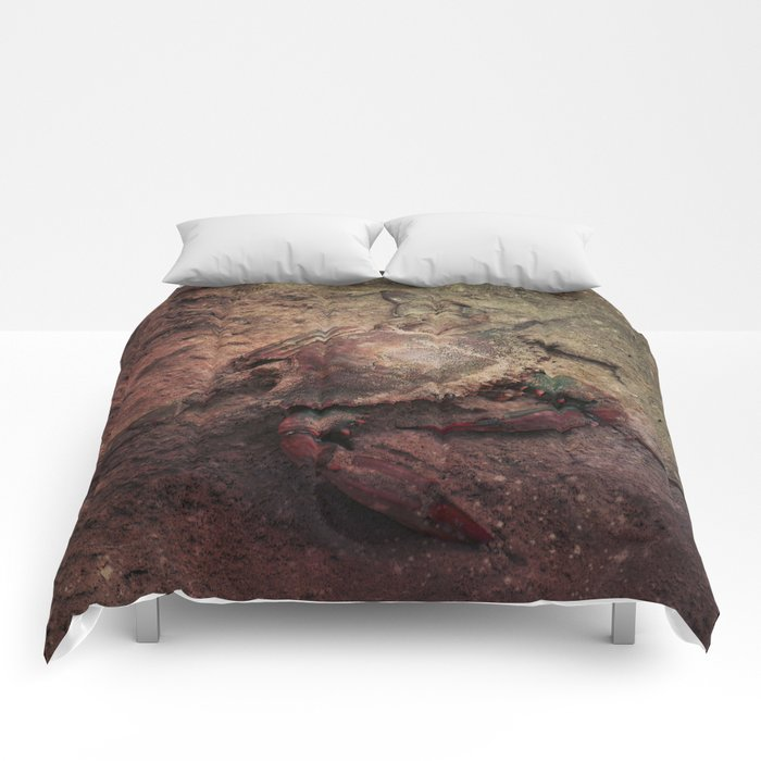 Crab Nebula Comforters