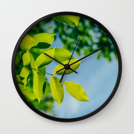 Fresh Green Tree Leaves In Summer, Tree Leaf, Intense Vivid Green, Nature In Summer, Ecology Friend Wall Clock