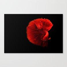 Monomachos Canvas Print