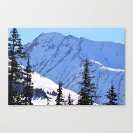 Back-Country Skiing  - V Canvas Print