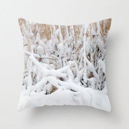 Corn Field 14 Throw Pillow