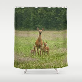 Doe with Twin Fawns Shower Curtain