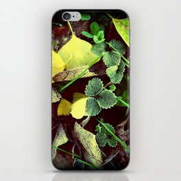 Frosty Leaves and Lawn iPhone Skin