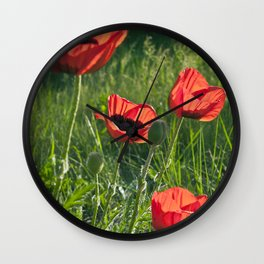Dream of Red Poppies Wall Clock
